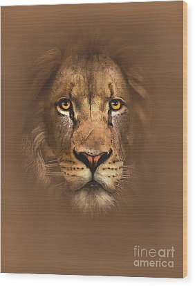 Scarface Lion Wood Print by Robert Foster