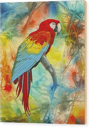 Scarlet Macaw In Abstract Wood Print by Paul Krapf