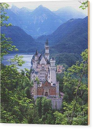 Schloss Neuschwanstein Wood Print by Timm Chapman