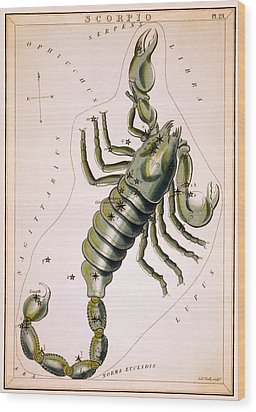 Scorpio Constellation  1825 Wood Print by Daniel Hagerman