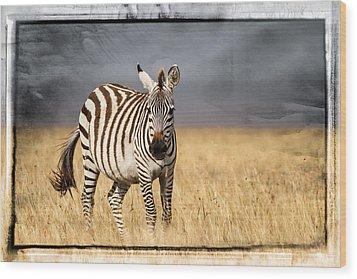 Scratched Tin Zebra Wood Print by Mike Gaudaur