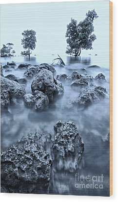 Seascape At Sunrise Wood Print by Jojie Alcantara