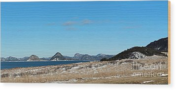 Seascape - Panorama Wood Print by Barbara Griffin
