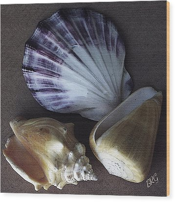 Seashells Spectacular No 30 Wood Print by Ben and Raisa Gertsberg