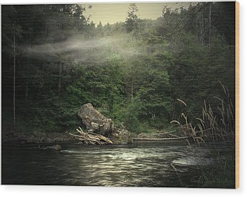 Seclusion On The Trinity Wood Print by Joyce Dickens