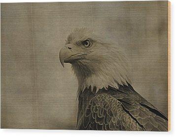 Sepia Bald Eagle Portrait Wood Print by Dan Sproul