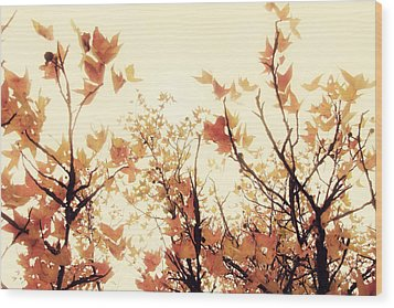 September Song Wood Print by Amy Tyler