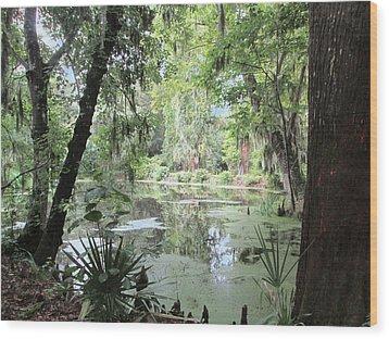 Serene Swamp Wood Print by Silvie Kendall