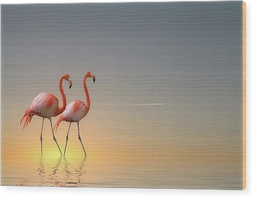 Serenity II Wood Print by Anna Cseresnjes