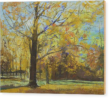 Shades Of Autumn Wood Print by Michael Creese