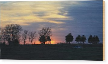Silhouetts Of A Sunset Wood Print by Joan Bertucci