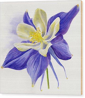 Single Blue Columbine Wood Print by Sharon Freeman