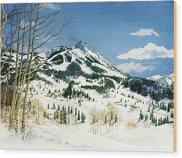 Skiers Paradise Wood Print by Barbara Jewell