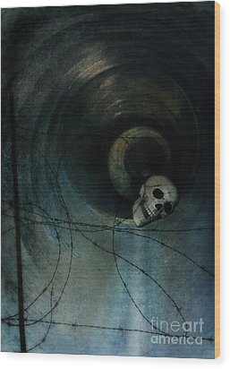 Skull In Drainpipe Wood Print by Jill Battaglia
