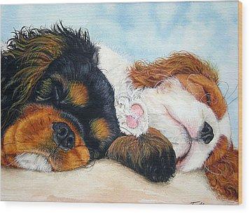 Sleeping Cavalier Puppies Wood Print by Toulla Hadjigeorgiou