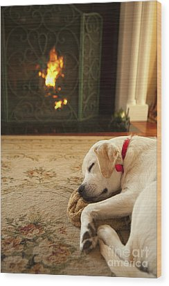 Sleepy Puppy Wood Print by Diane Diederich