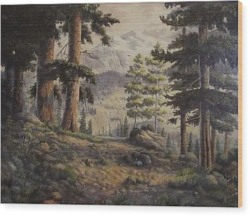 Slumgullian Pass Wood Print by Wanda Dansereau