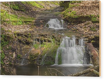 Small Falls At Parfrey's Glen Wood Print by Jonah  Anderson