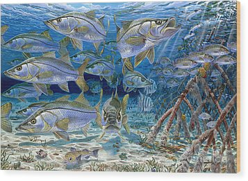 Snook Cruise In006 Wood Print by Carey Chen
