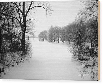 Snow Covered Herrick Lake 1981 Wood Print by ImagesAsArt Photos And Graphics