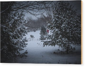 Snow In The Meadow Wood Print by Cheryl Swift
