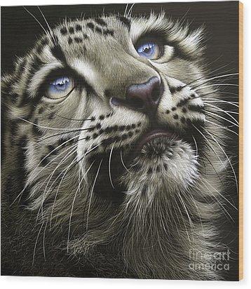 Snow Leopard Cub Wood Print by Jurek Zamoyski
