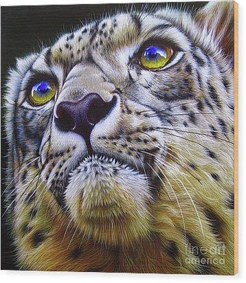Snow Leopard Wood Print by Jurek Zamoyski