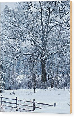 Snow Wood Print by Sarah Loft