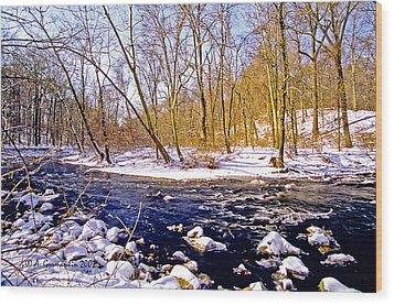 Wood Print featuring the photograph Snow Scene Pennsylvania Woodland Stream by A Gurmankin