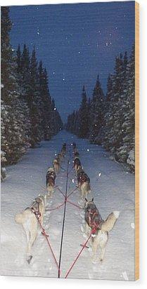 Snowy Night In The Pines Wood Print by Karen  Ramstead