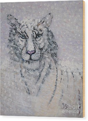 Snowy White Tiger Or Chairman Of The Board Wood Print by Phyllis Kaltenbach