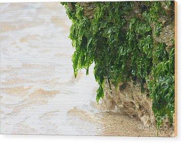 Soft Waves Of Green Wood Print by Jennifer Apffel