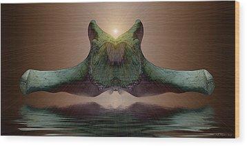 Sonar 5 Wood Print by WB Johnston