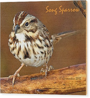 Wood Print featuring the photograph Song Sparrow On Tree Branch by A Gurmankin