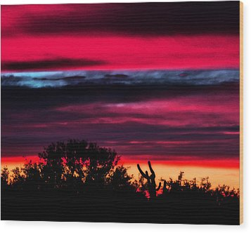 Sonoran Sunset Tucson Desert Wood Print by Jon Van Gilder