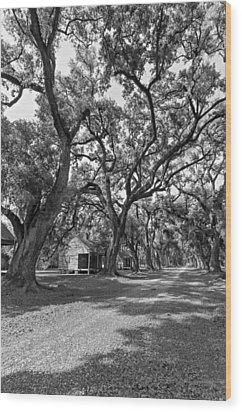 Southern Lane Monochrome Wood Print by Steve Harrington