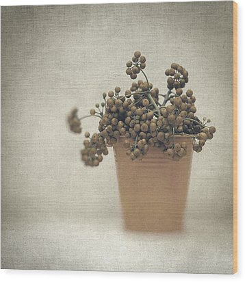 Souvenirs De Demain Wood Print by Taylan Apukovska