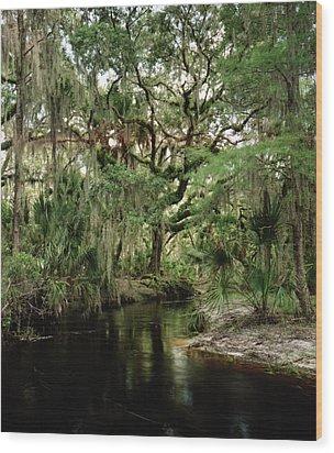 Spanish Moss And Oak. Three Lakes W.m.a. Wood Print by Chris  Kusik
