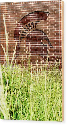 Sparty On The Wall Wood Print by John McGraw