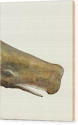 Sperm Whale First Part Wood Print by Juan  Bosco