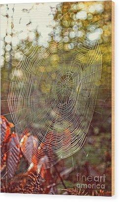 Spider Web Wood Print by Edward Fielding