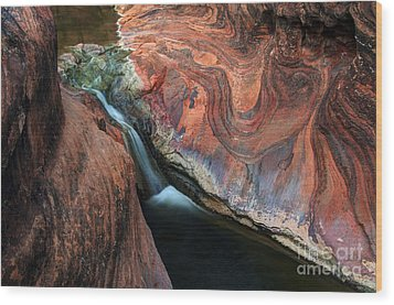Splendor On Quail Creek Wood Print by Bob Christopher