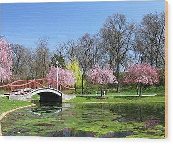 Spring At Italian Lake Wood Print by Lori Deiter