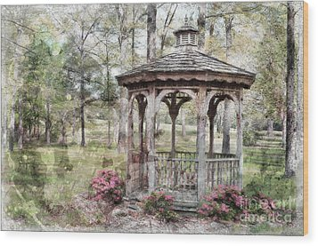 Spring Gazebo Painteffect Wood Print by Debbie Portwood
