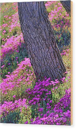 Spring Meadow Wood Print by Mariola Bitner