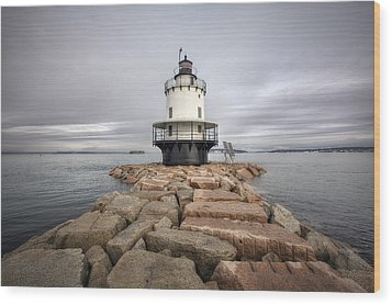 Spring Point Ledge Wood Print by Eric Gendron