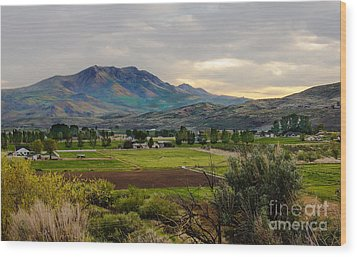 Spring Time In The Valley Wood Print by Robert Bales