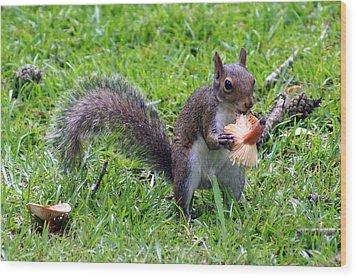Squirrel Eats Mushroom Wood Print by Kim Pate