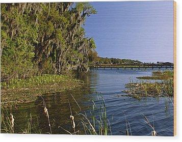 St Johns River Florida Wood Print by Christine Till