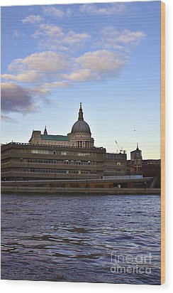 St Paul's Cathedral London Wood Print by Terri Waters